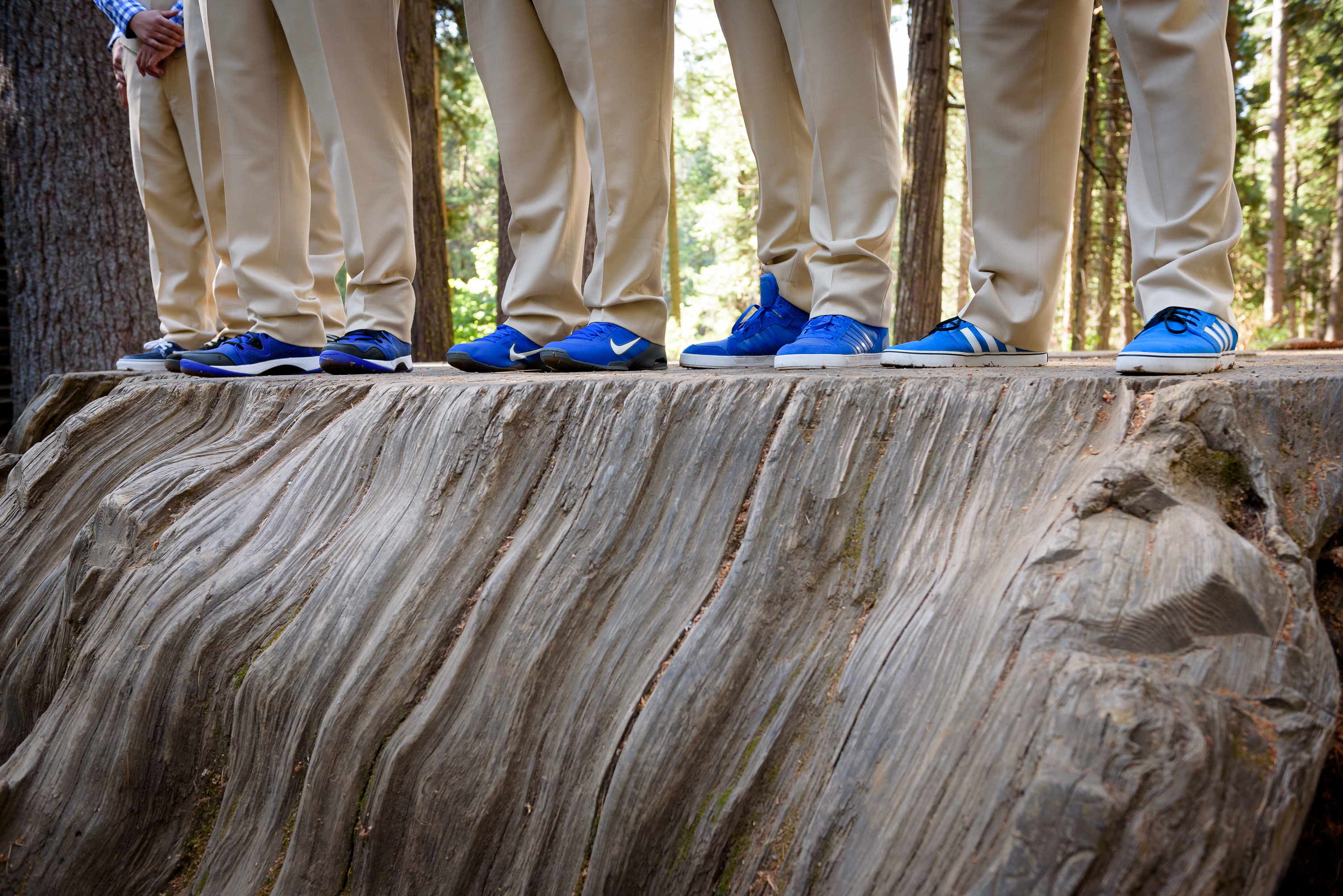 Luke's groomsmen wore blue shoes atop the giant stump