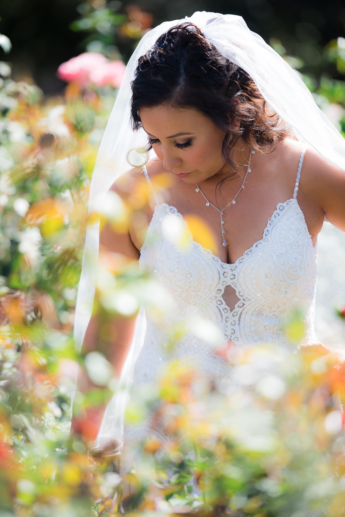Portrait of a Latina Bride standing in a rose garden.
