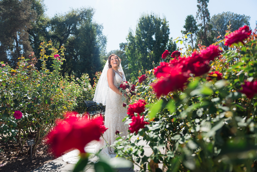 A portrait photograph of a bride standing in a rose garden.
