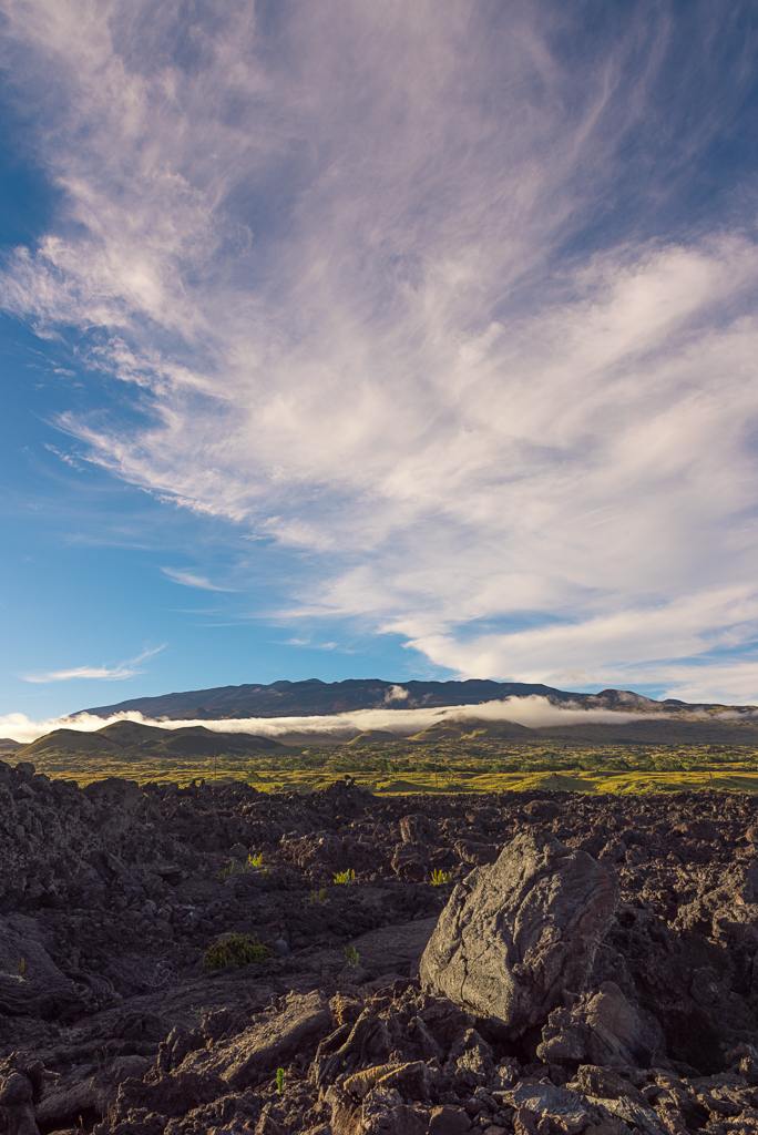 A landscape photograph of the foothills leading up to Mauna Kea on the Big Island of Hawaii.