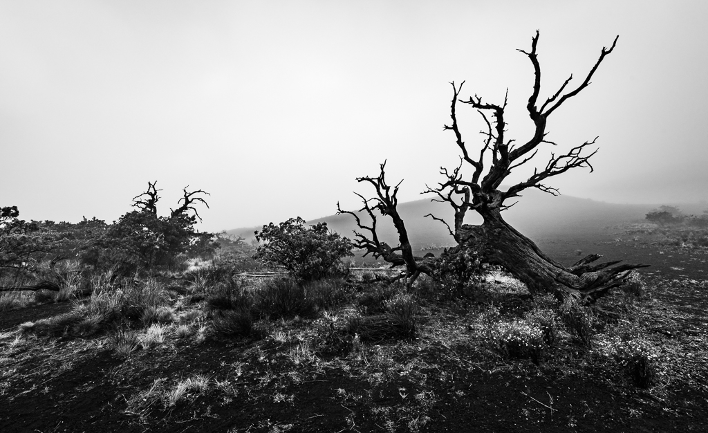 A black and white landscape photograph of the land near the top of Mauna Kea.