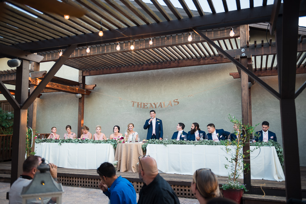 Wide angle photograph of a groom making a speech to his guests.