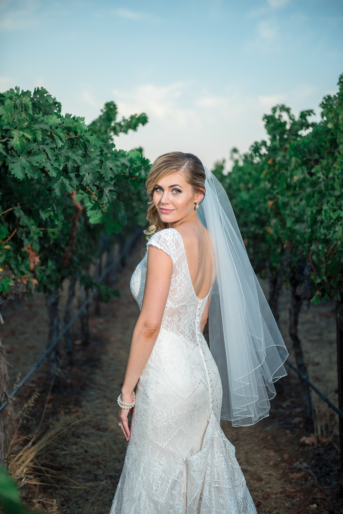 A bridal portrait taken between grapevines in Livermore, CA.