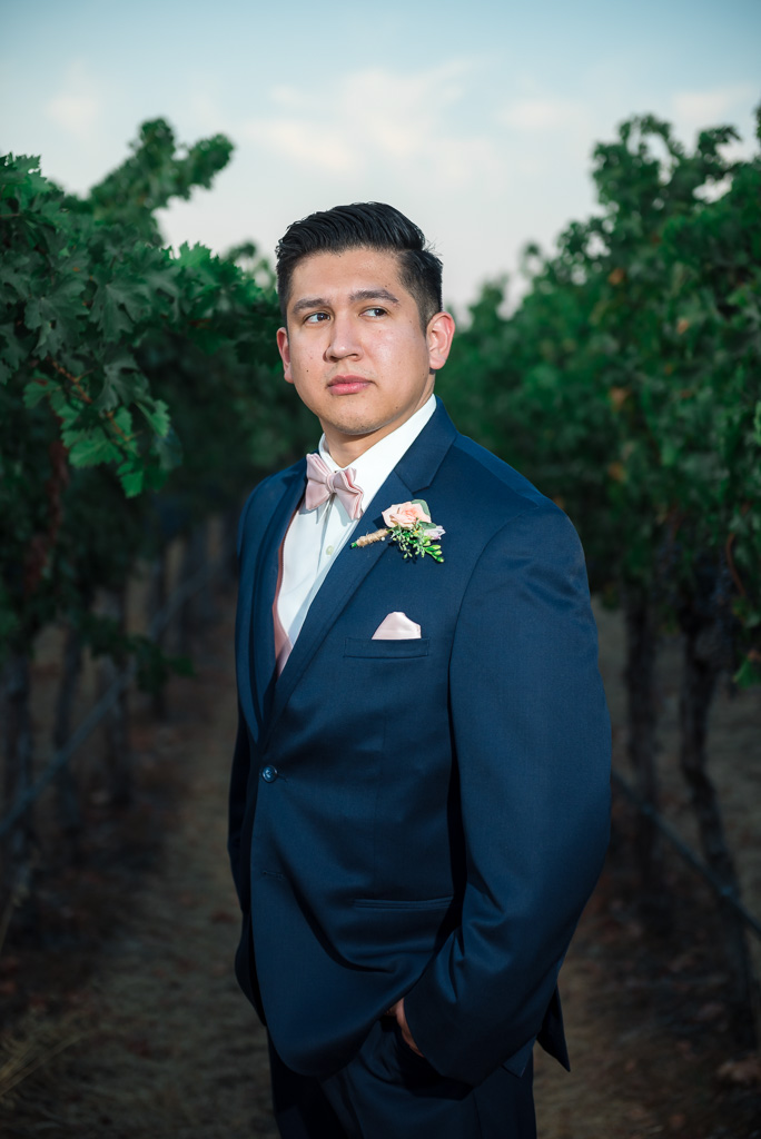 A groom portrait taken between grapevines in a Livermore, CA vineyard.