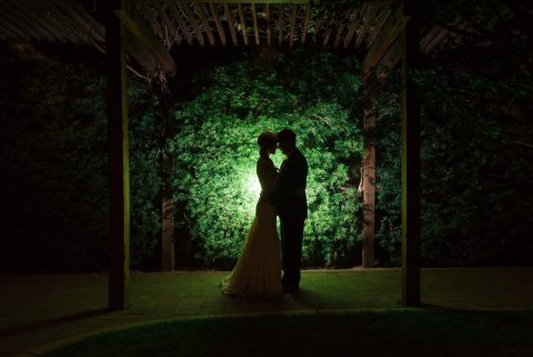 Photograph of a bride and groom silhouetted against a green wall of vines.