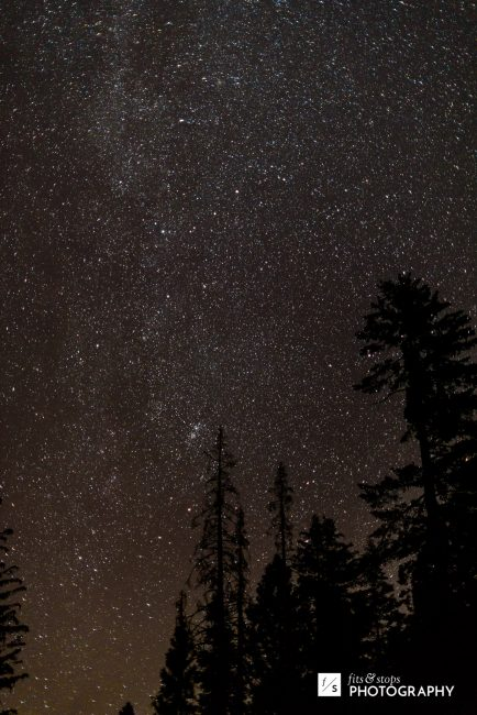 With the kids asleep, I wandered back to the lake for some starry night photography.