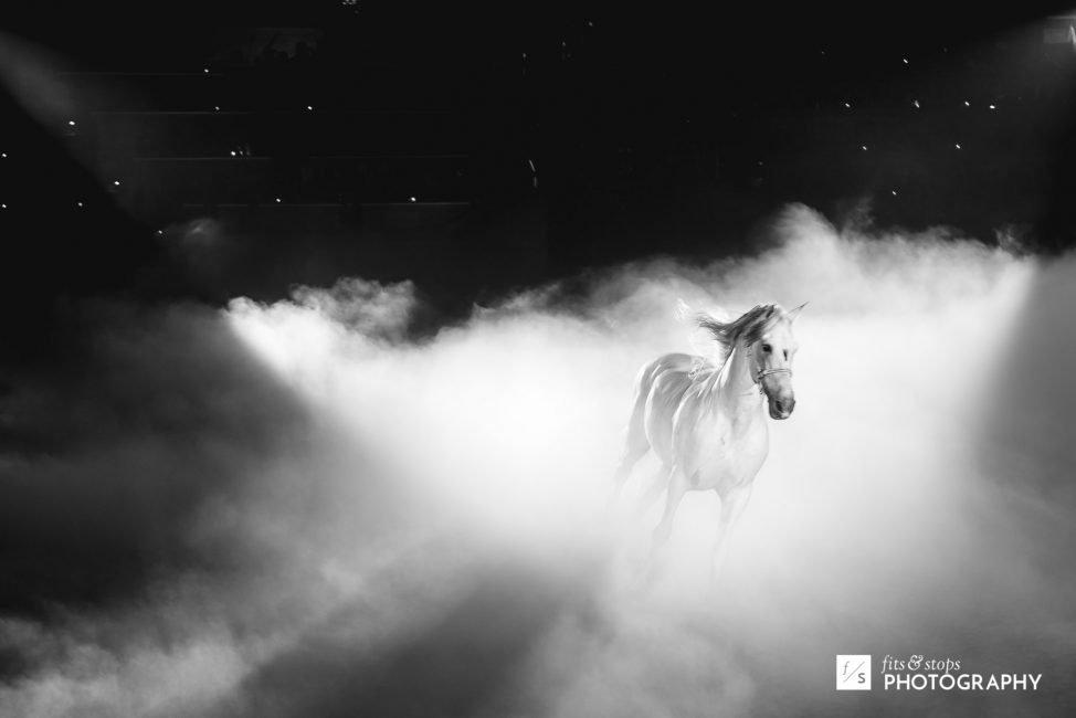 A white stallion runs through smoke during a theatrical performance.
