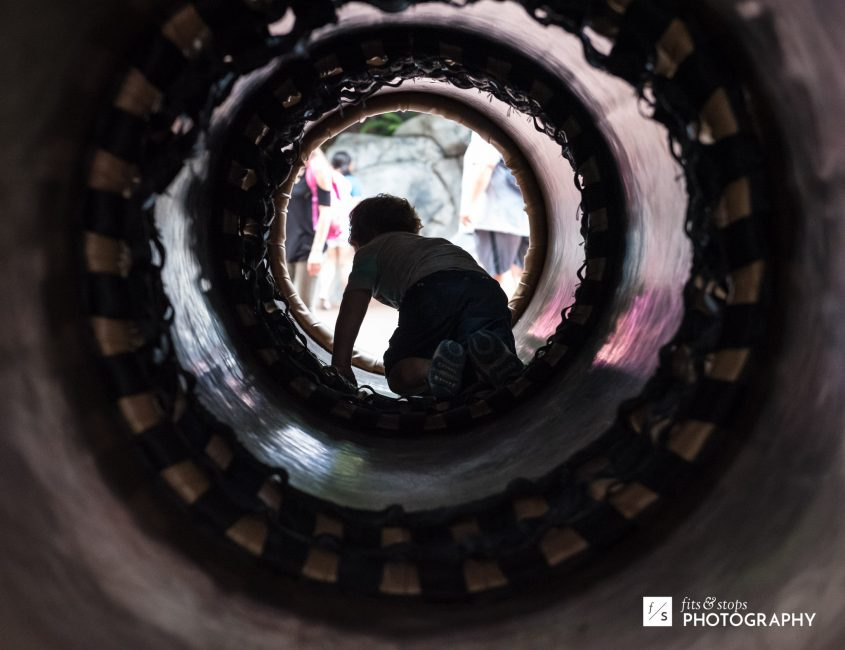 Photograph of a young boy climbing through a tunnel at a California Adventure play place.