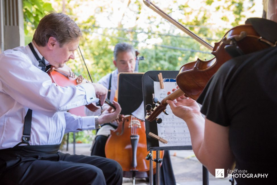 The string quartet sprang to life as the couple returned...just in time for waltz lessons.