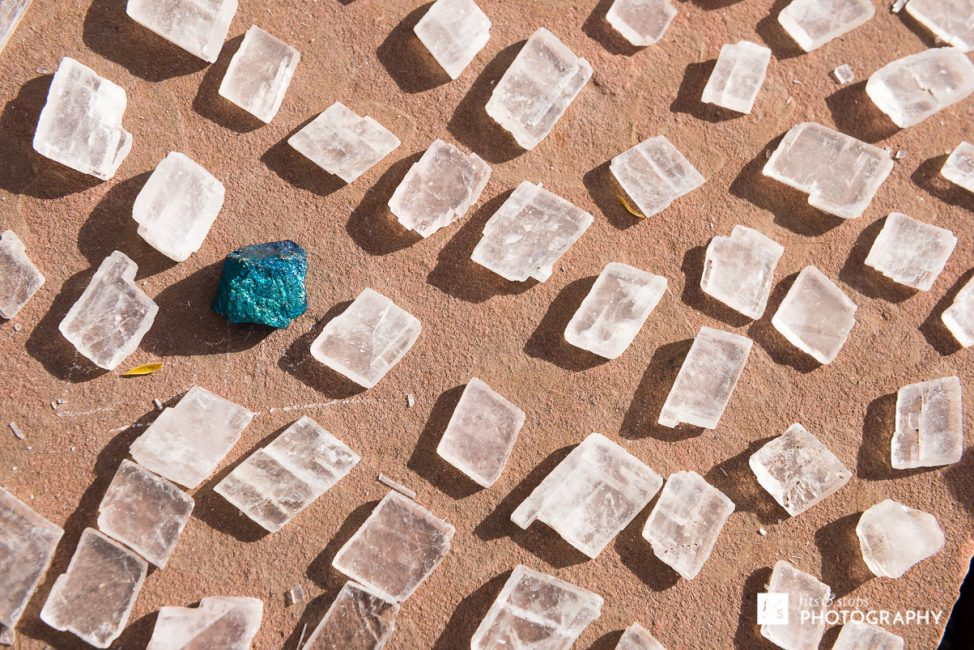 Close up photograph of a single turquoise gem among a large group of white gems.