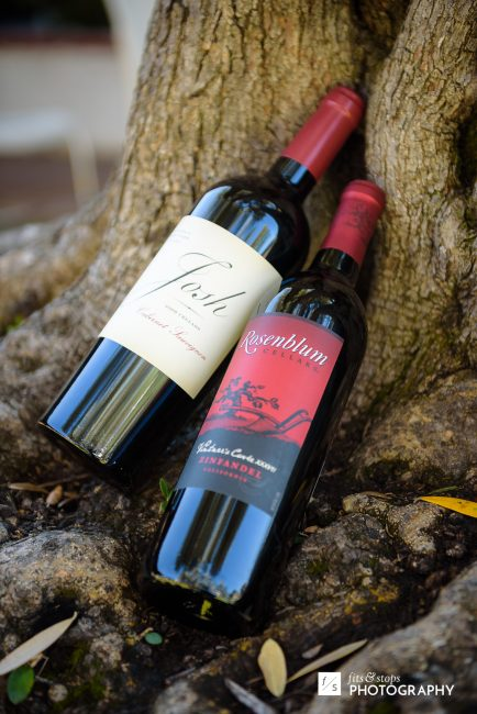 Photography of two bottles of wine leaning against an olive tree in the morning.