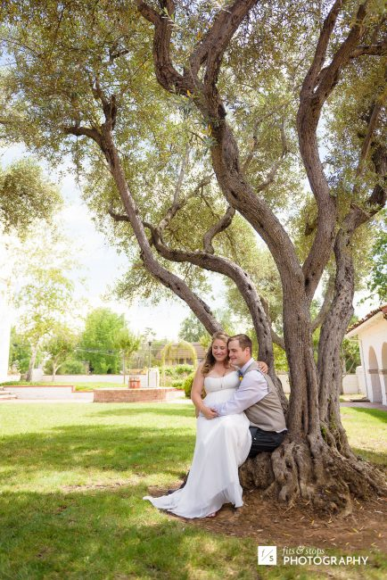Environmental portrait of a bride and a groom sitting at the base of an olive tree.