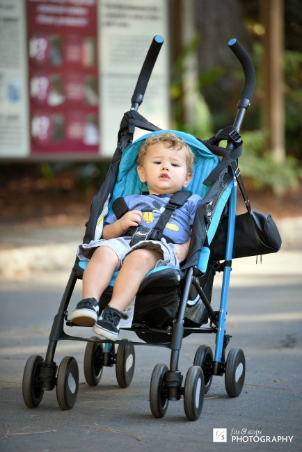 A photo of a toddler in a stroller.